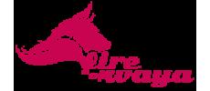 fireofwaya-logo.png